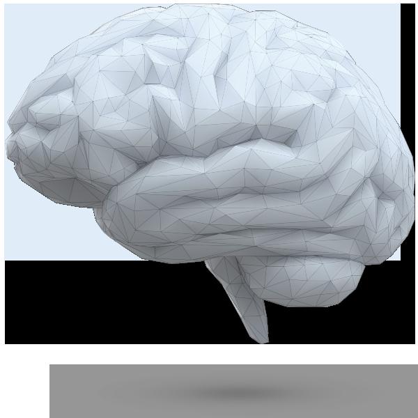 Graphid agenzia di comunicazione roma brain